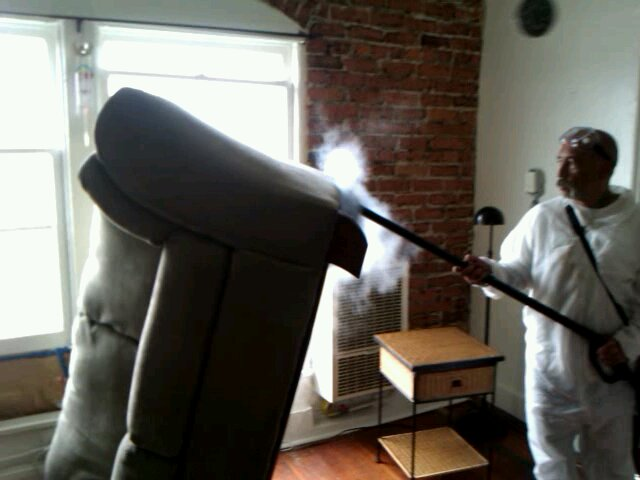 bed bug control Exterminator Extraordinaire steaming